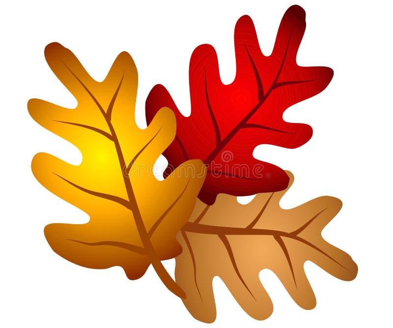 zostaw clipart dębowego jesienią drzewa ilustracji