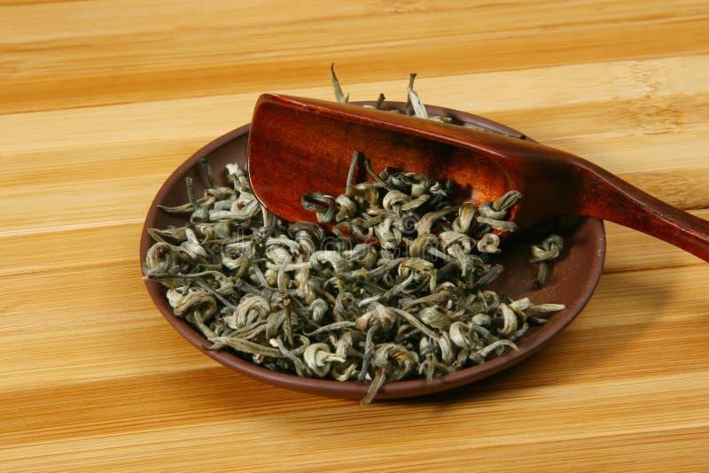 zostaw zielony herbatę obraz stock