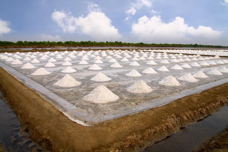 Zout landbouwbedrijf stock foto