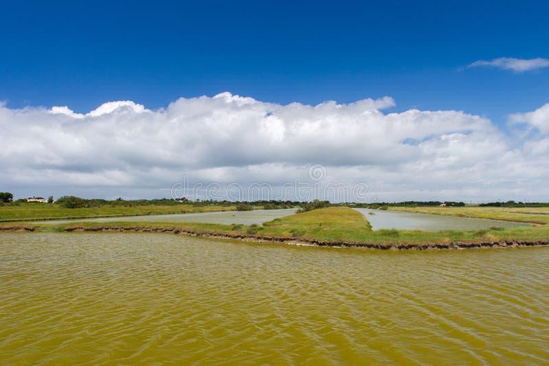 Zout meer bij Frans eiland Oleron stock afbeelding