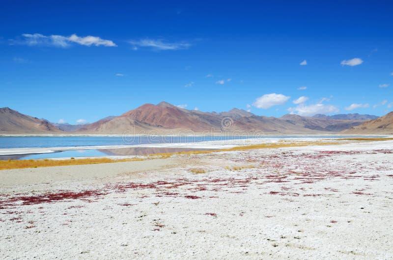 Zout meer in Ladakh royalty-vrije stock fotografie