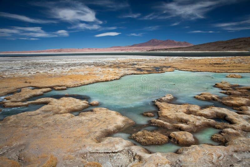 Zout meer Salar DE Tara, Chili royalty-vrije stock foto's