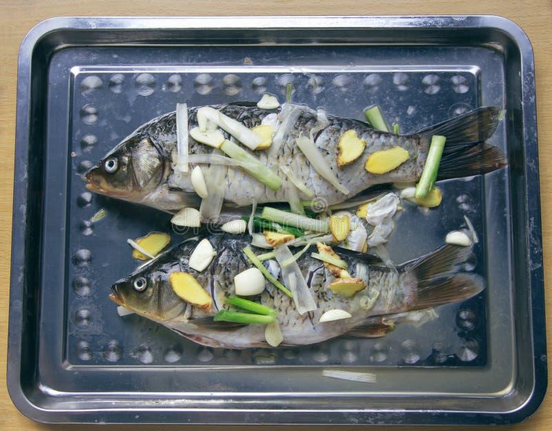 Zout van de vis voor gebruik stock foto