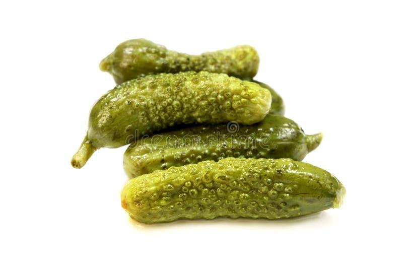 Zoute kleine komkommers royalty-vrije stock foto's