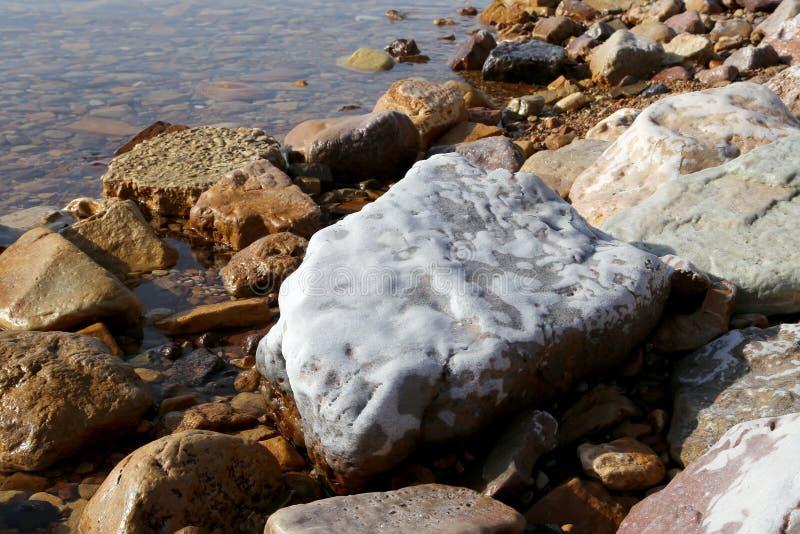 Zoute kristallisatie bij kust van het Dode Overzees, Jordanië royalty-vrije stock afbeeldingen