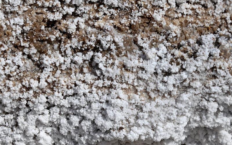 Zoute kristallisatie bij kust van het Dode Overzees, Jordanië stock foto