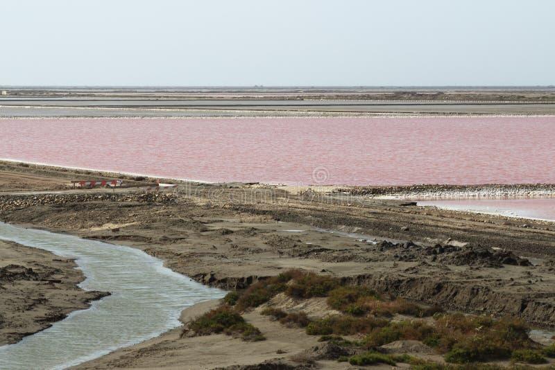 Zoute meren Mas des Crottes, Camargue, Frankrijk stock foto's