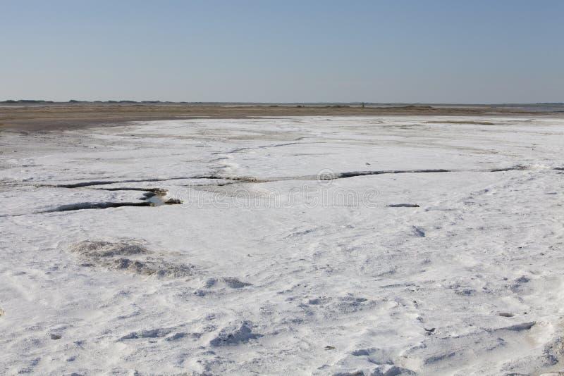 Zoute stortingen in Saskatchewan, Canada royalty-vrije stock afbeelding