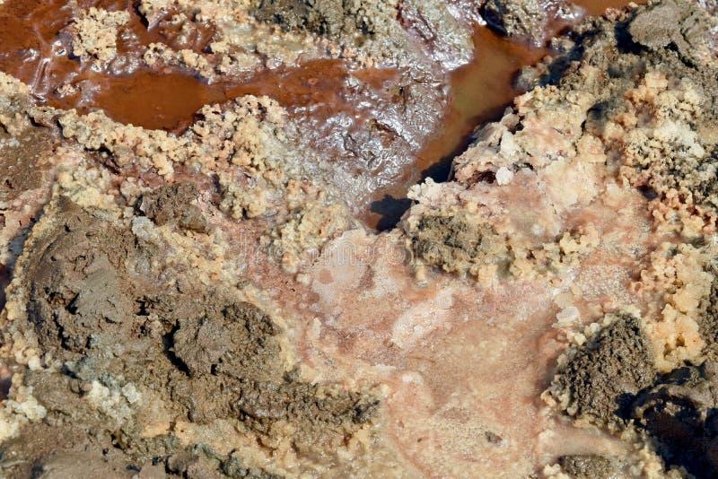 Zouten en Mineralen op het Strand van het Dode Overzees royalty-vrije stock afbeeldingen