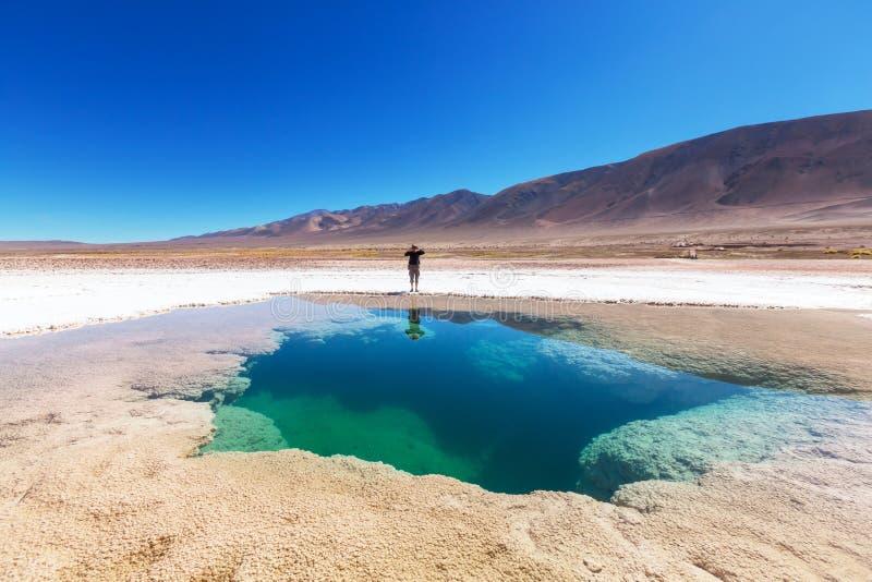 Zoutmeren in Argentinië stock afbeelding