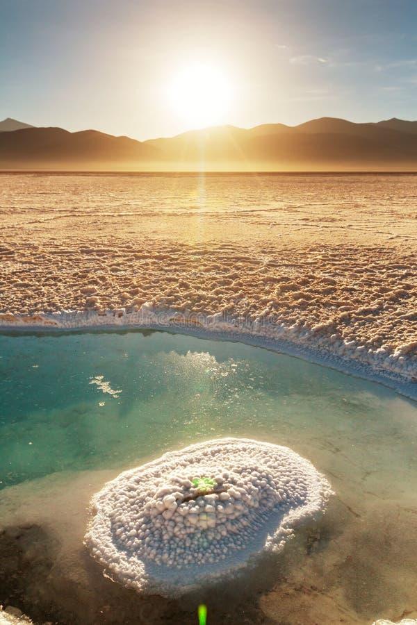 Zoutmeren in Argentinië stock foto