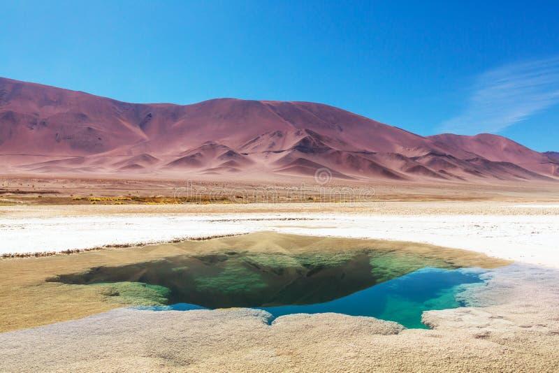 Zoutmeren in Argentinië stock fotografie