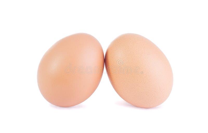 zrównoważeni jajka obraz royalty free