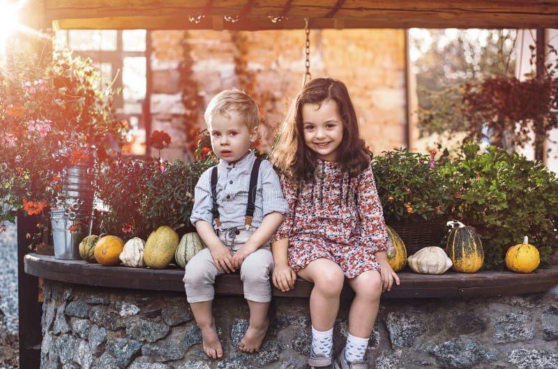 Zrelaksowani dzieci w agrotourism gospodarstwie rolnym zdjęcie stock