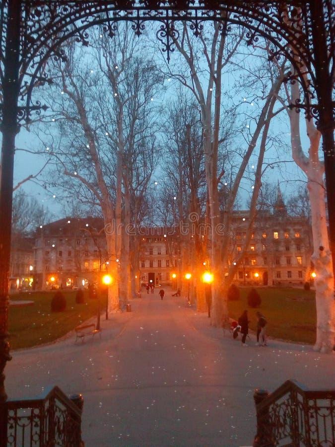 Zrinjevac på natten fotografering för bildbyråer