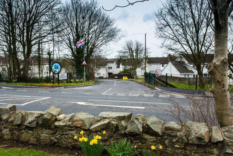 Zrzeszeniowa flaga, Antrim, Północny - Ireland obrazy royalty free