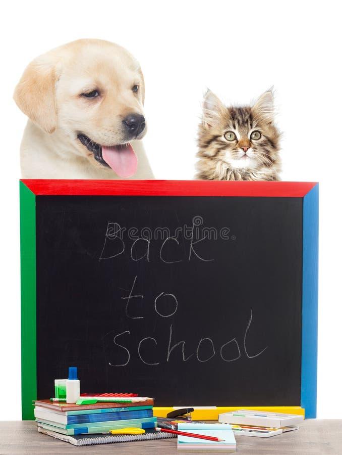Zubehör von der Schule lizenzfreies stockbild