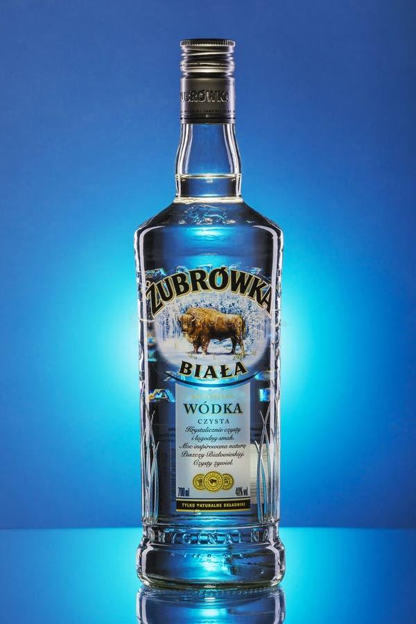 Zubrowka white vodka on blue gradient background stock photo