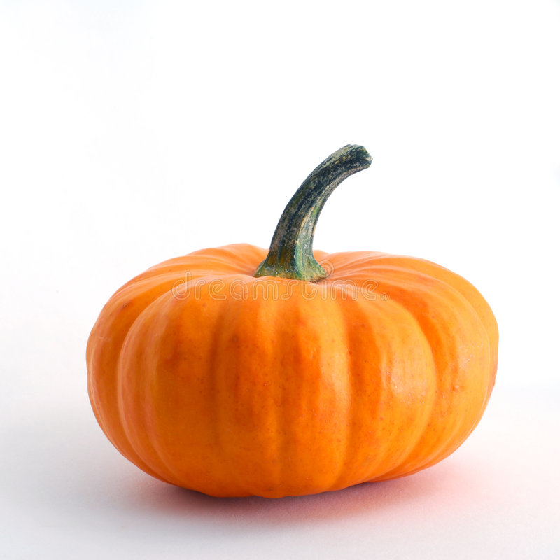 Download Zucca immagine stock. Immagine di thanksgiving, caduta - 7309907