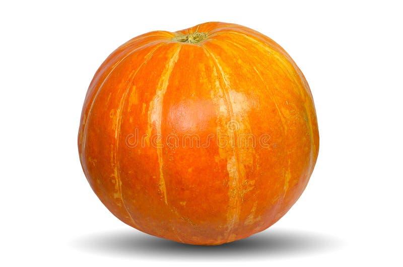 Zucca arancio isolata sui precedenti bianchi fotografie stock