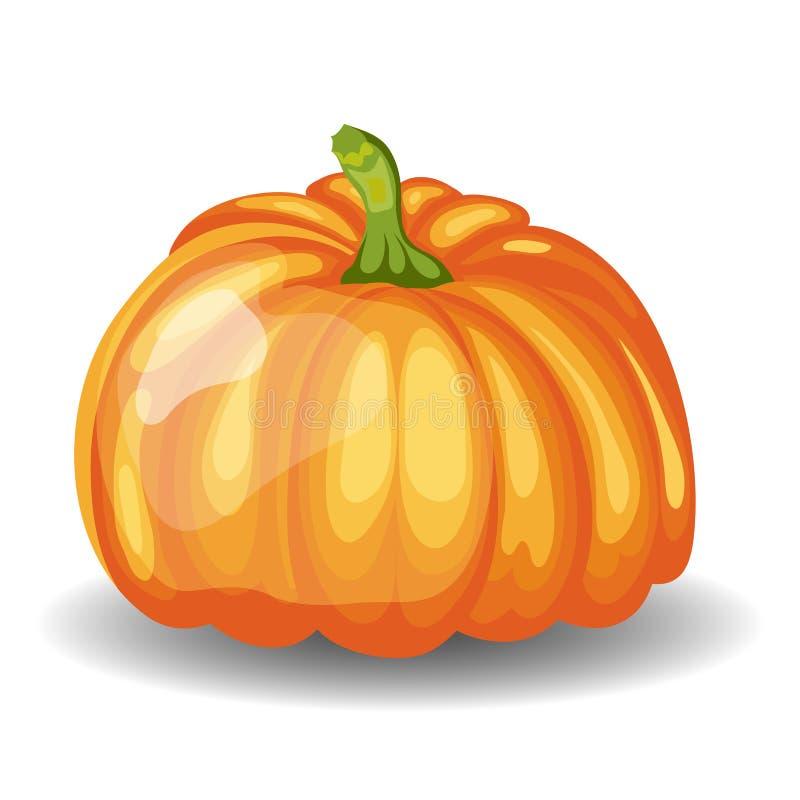 Zucca arancio lucida illustrazione vettoriale