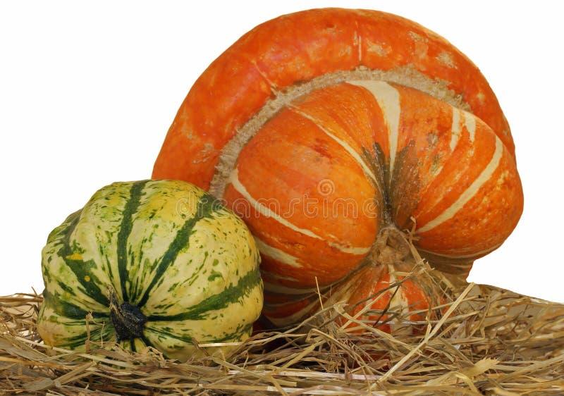 zucca arancio per Halloween e uno zucchini verde sulla paglia immagini stock libere da diritti