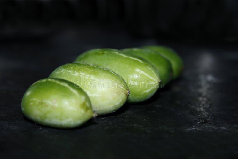 Zucca dell'edera nel fondo nero immagine stock libera da diritti