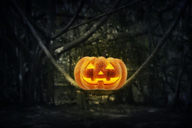 Zucca della lanterna di Jack O sull'albero del tronco in foresta mistica alla notte, fotografia stock