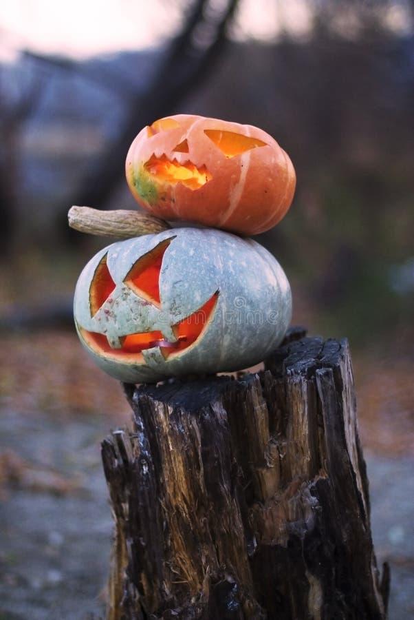 Zucca di Halloween di due malvagità sull'albero mozzo fotografia stock libera da diritti