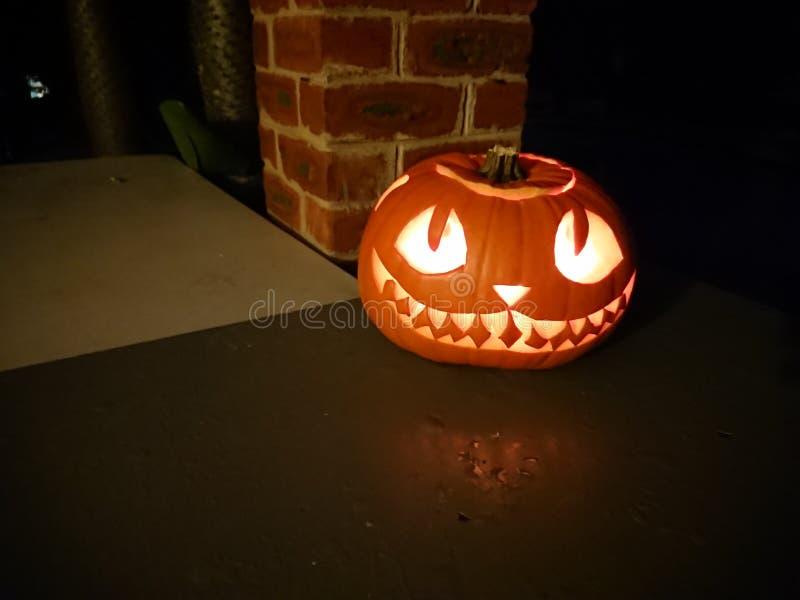 Zucca di Halloween nel Sudafrica fotografia stock libera da diritti