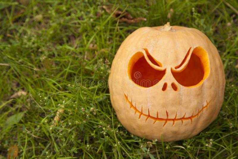 Zucca di Halloween su erba verde fotografie stock