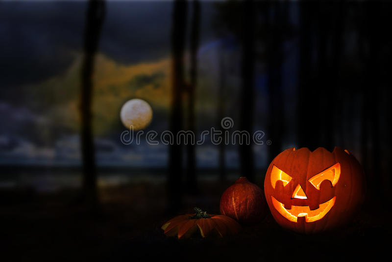 Zucca di Halloween in una foresta scura sotto la luna piena al Cl immagine stock libera da diritti
