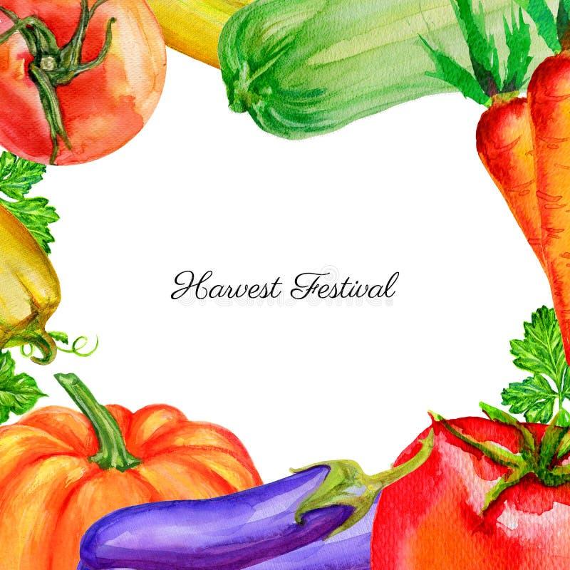 Zucca di verdure dell'acquerello, pomodoro, pepe, zucchini, barbabietole, carota, illustrazione disegnata a mano del prezzemolo i royalty illustrazione gratis