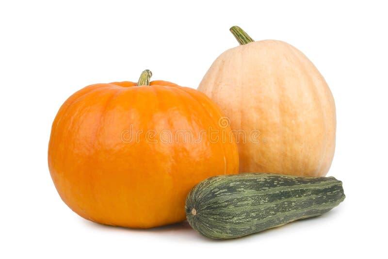Zucca due e zucchini. immagini stock