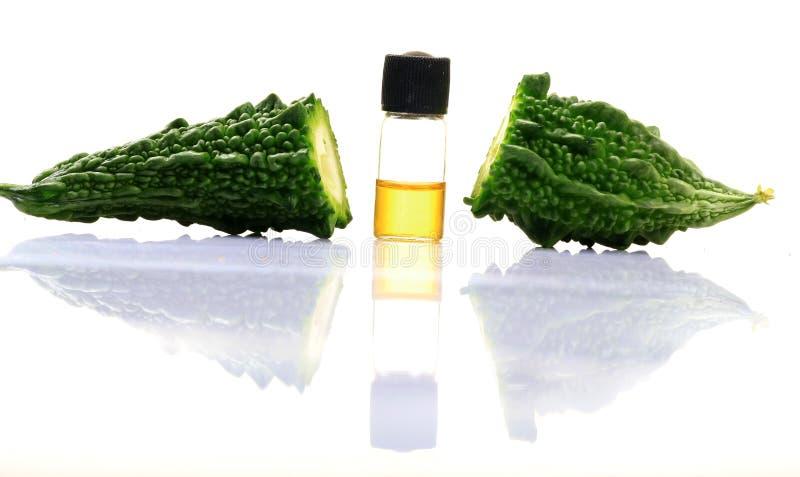Zucca e medicina amare immagini stock libere da diritti