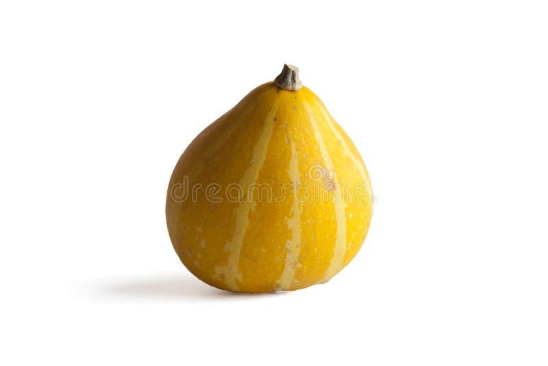 Zucca gialla su bianco fotografia stock
