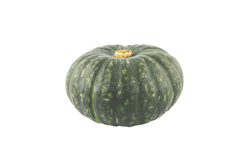 Zucca giapponese verde immagine stock libera da diritti