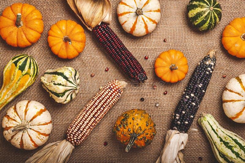Zucca, mais e zucche su un fondo della tela da imballaggio immagini stock