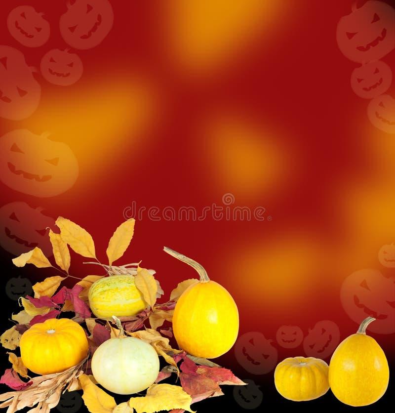 Zucche con i fogli asciutti per la decorazione di Halloween fotografia stock
