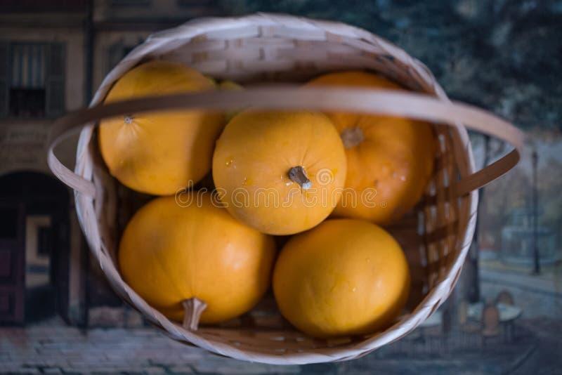 Zucche decorative in un canestro fotografia stock
