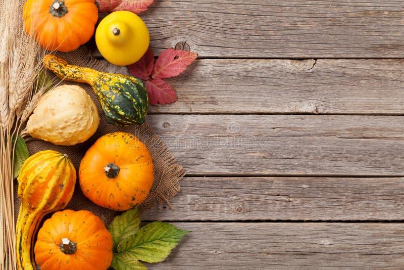 Zucche di autunno sulla tavola del bordo di legno immagine stock libera da diritti