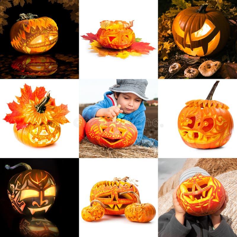 Zucche di Halloween, collage fotografie stock libere da diritti