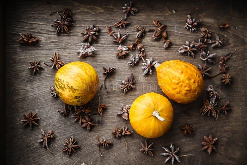 Zucche e anice stellato gialli su fondo di legno immagine stock libera da diritti