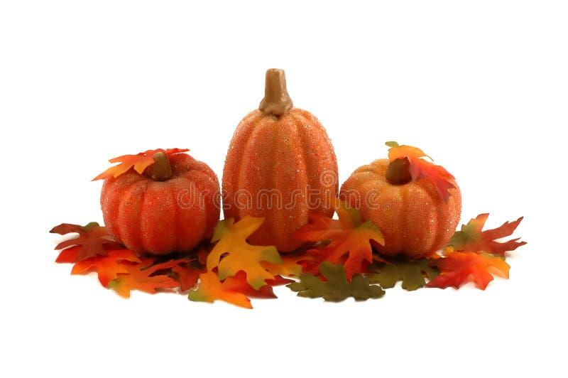 Zucche e fogli decorazione di ringraziamento fotografia - Caduta fogli di colore stampabili ...