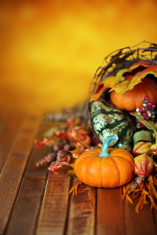 Zucche, zucche e foglie in una cornucopia di autunno fotografie stock libere da diritti