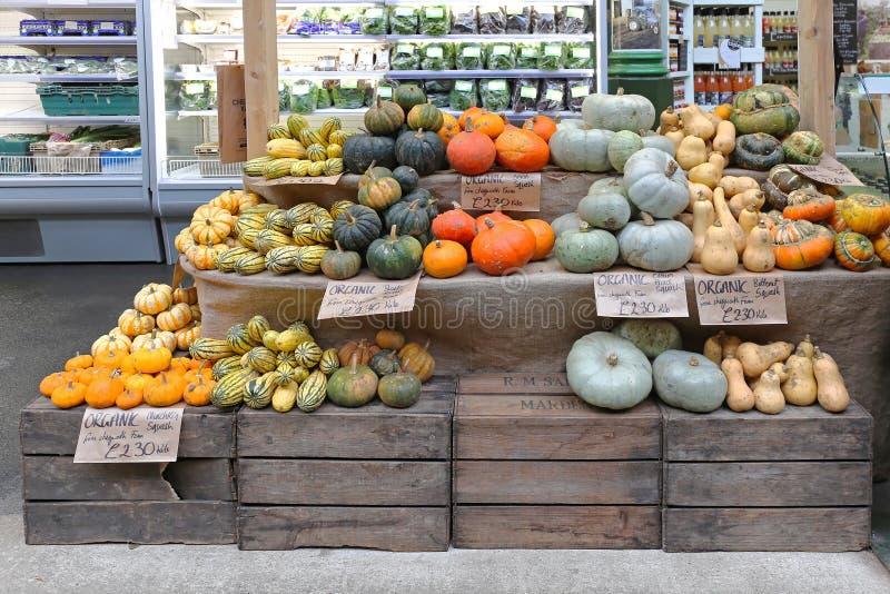 Zucche e zucca fotografia stock libera da diritti