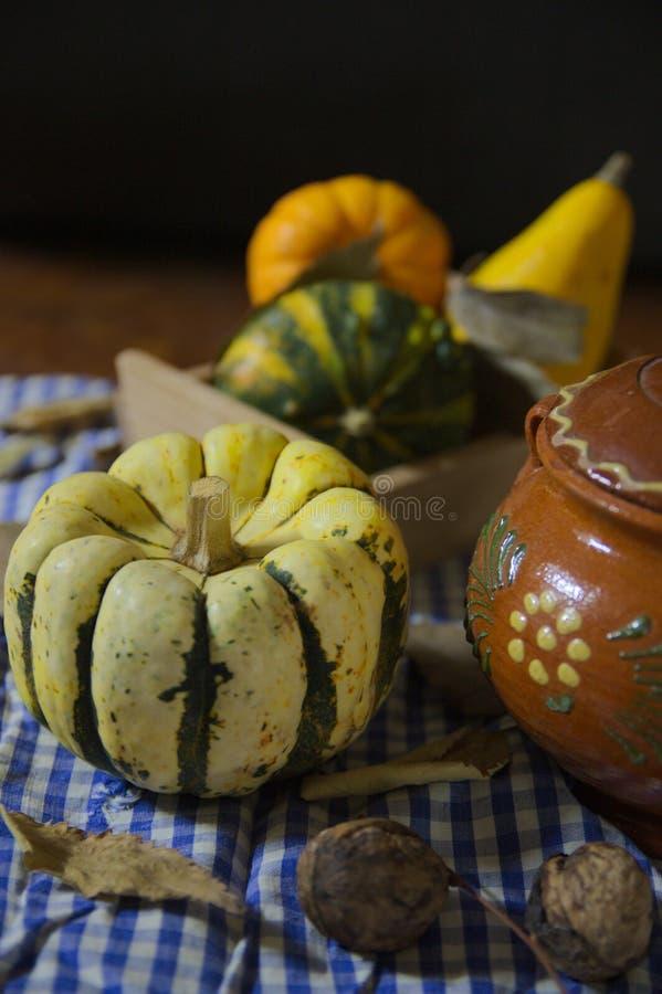 Zucche su una tavola decorata rustica fotografie stock