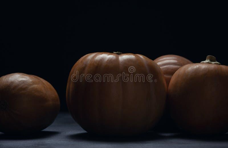 Zucche sulla vista laterale del fondo di legno scuro fotografie stock libere da diritti