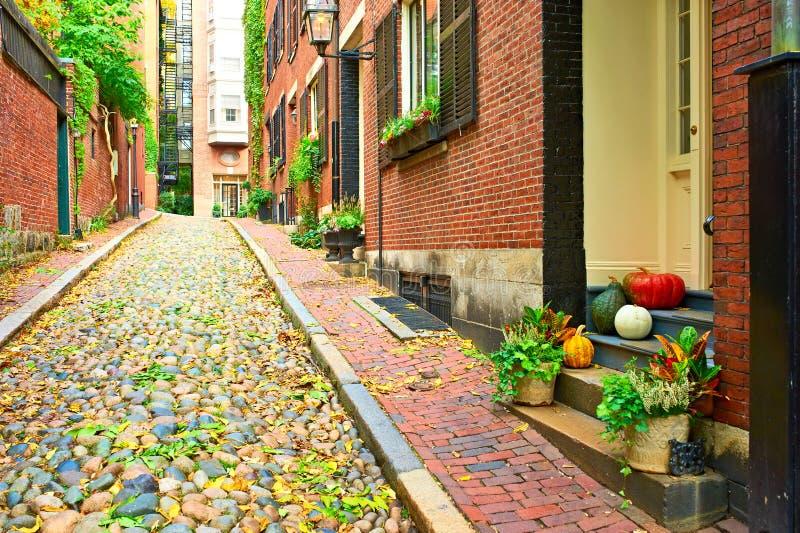 Zucche vicino alla porta per Halloween fotografia stock libera da diritti