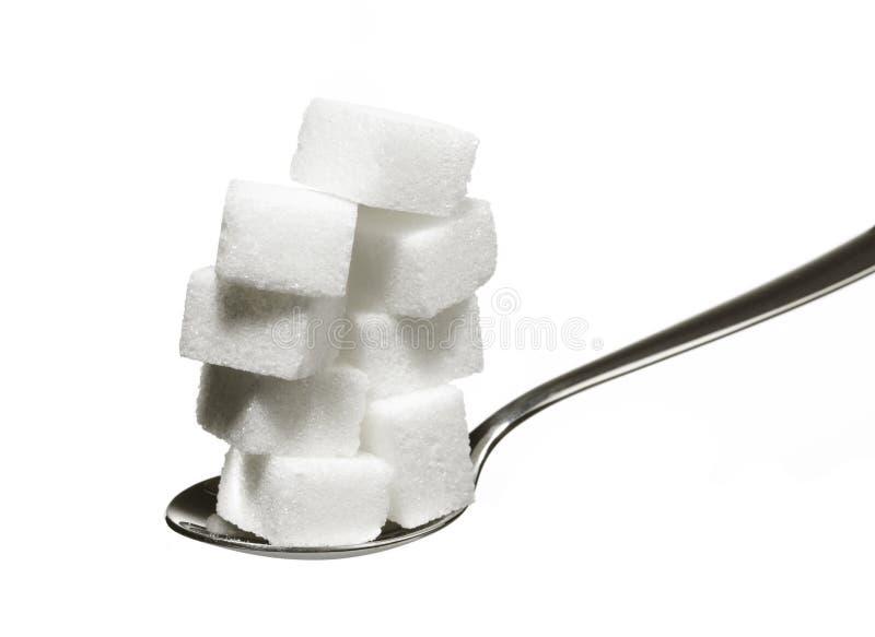 Zucchero 1 fotografie stock libere da diritti